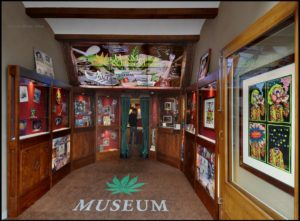 weed-smokers-museum
